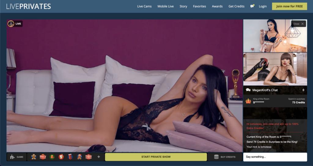 LivePrivates Live Chat Room